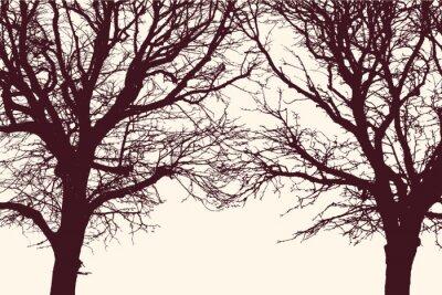 Poster due alberi