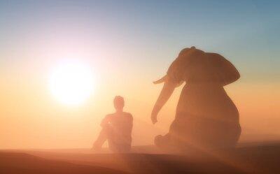 Poster Elefante e si