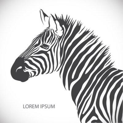 Poster Etichetta con la testa di una zebra. Vector.