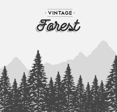 Poster etichetta di testo foresta dell'annata su albero paesaggio invernale