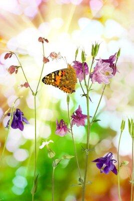 Poster farfalla e fiori nel giardino primo piano