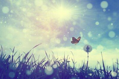 Poster Farfalla e tarassaco