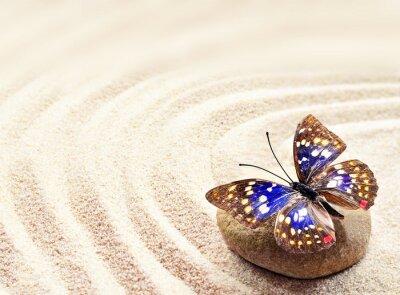 Poster Farfalla sulla sabbia