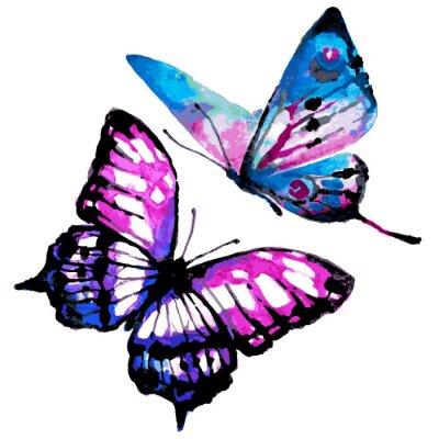 Poster farfalle progettazione