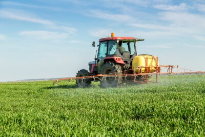 Poster Farmer spruzzare campo di grano verde