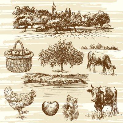 Poster fattoria, il raccolto, paesaggio rurale - set disegnata a mano