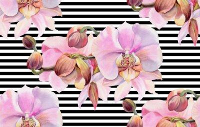 Poster Fiori ad acquerelli Orchidee rosa