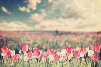 Poster fiori di tulipano prato epoca