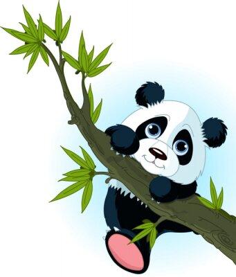 Poster Giant tree climbing panda