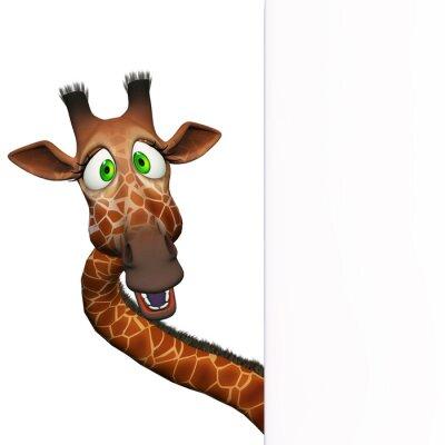 Poster Giraffa con un bordo bianco