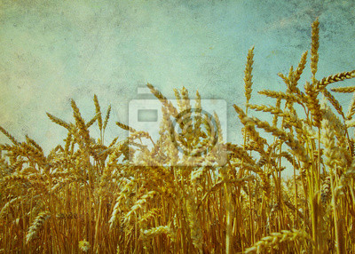 Poster grano