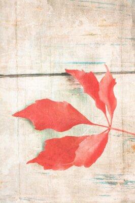 Poster Grungy sfondo con foglia rossa