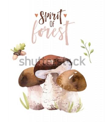 Poster I funghi della foresta della Boemia dell'acquerello hanno messo, illustrazione dell'amanita del manifesto isolata terreno boscoso, agarico di mosca, boletus, decorazione del fungo del boletus
