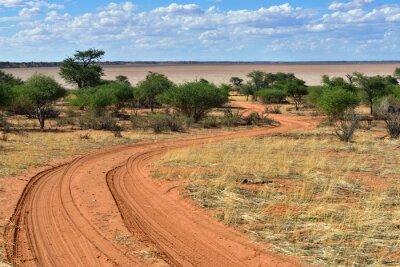 Poster Il deserto del Kalahari, Namibia