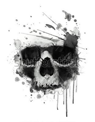 Poster Illustrazione del cranio dell'acquerello