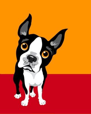 Poster illustrazione divertente di Boston Terrier