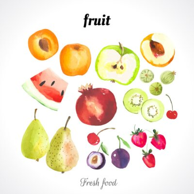 Poster Illustrazione vettoriale con cibo acquerello.