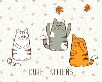Poster Illustrazione vettoriale di tre gattini cute doodle.