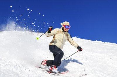 Poster Joy di sci