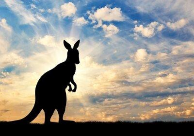 Poster Kangaroo silhouette contro un cielo