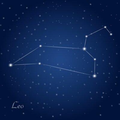 Poster Leo costellazione zodiacale a cielo notturno stellato