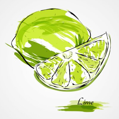 Poster lime fruits