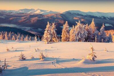 Poster Mattina di sole sorgere del sole in montagna d'inverno. Stile retrò.
