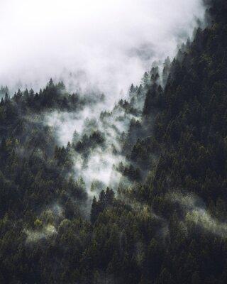 Poster mgła