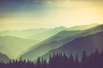 Poster Misty estate colline di montagna paesaggio.