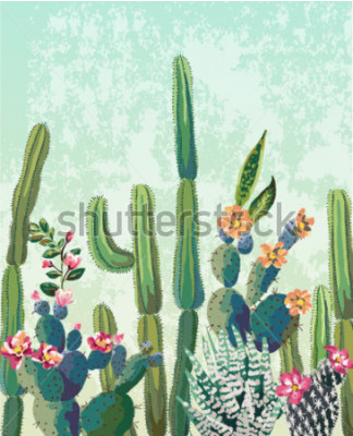 Poster Modello sveglio di vettore del cactus delle succulente