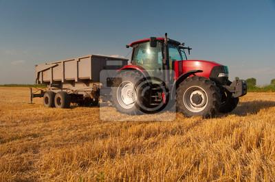 Poster Moderna trattore rosso in campo agricolo soleggiata giornata estiva