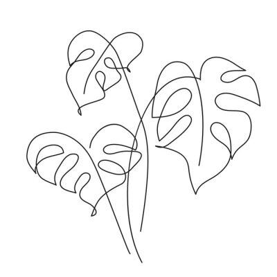 Poster Monstera Tropical leaf