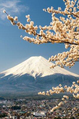 Poster Monte Fuji con rami di ciliegio, Giappone