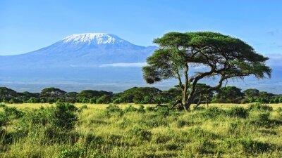 Poster Monte Kilimanjaro