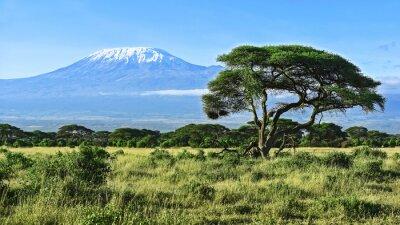 Poster Monte Kilimanjaro in Kenya