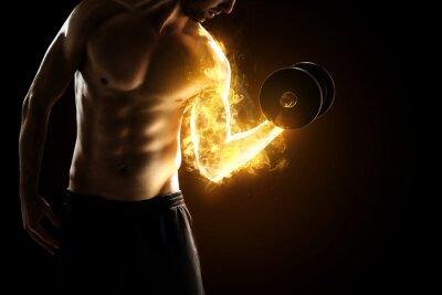 Poster Muscoli Masterizzazione
