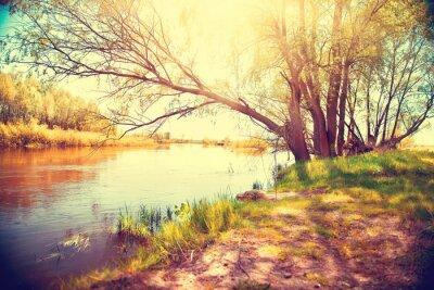 Poster Paesaggio di autunno con un fiume. Bella scena
