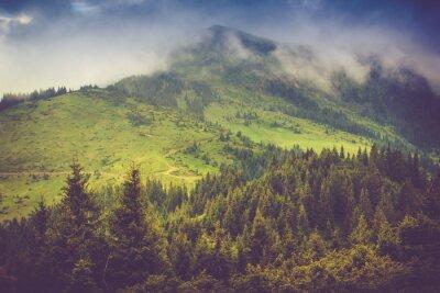 Poster Paesaggio montano e foreste cime ricoperte di nebbia. cielo coperto drammatico.