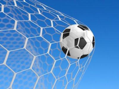 Poster Pallone da calcio in rete