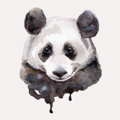 Poster Panda.Watercolor illustrazione vettoriale