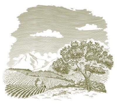 Poster Penna e inchiostro disegno di un campo di fattoria con le montagne sullo sfondo.