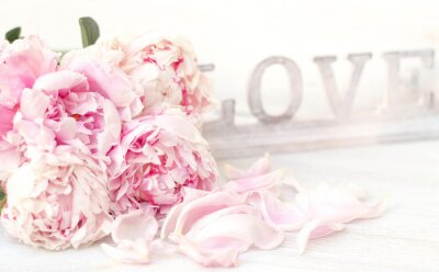 Poster Peony and Love