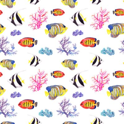 Poster Pesce e conchiglia. Ripetendo seamless. Acquerello
