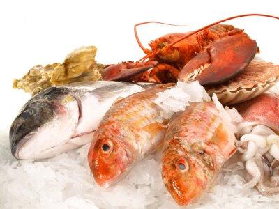 Poster Pesce e frutti di mare