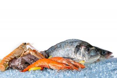 Poster Pesce fresco isolato su sfondo bianco
