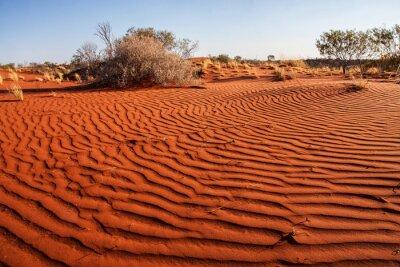 Poster Piccoli impianti nel deserto del Western Australia