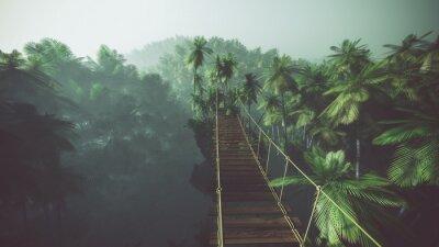 Poster Ponte di corda in giungla nebbiosa con le palme. Retroilluminato.