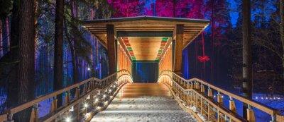Poster Ponte di legno nel parco forestale.