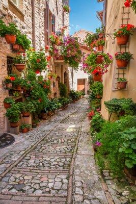 Poster Portico in piccola città in Italia nella giornata di sole, Umbria