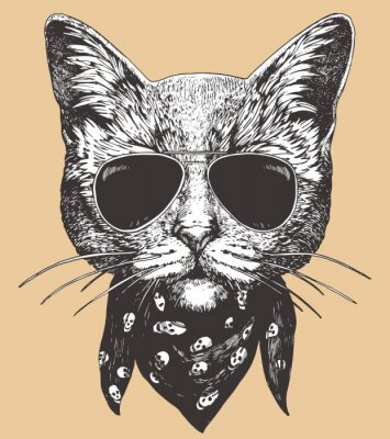 Poster Portrait of Cat with sunglasses and scarf. Hand-drawn illustration. Vector